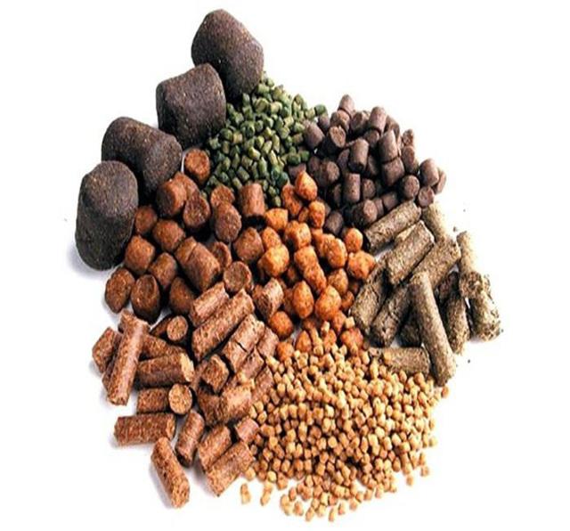 Защищенный 99% и 84% пальмовый жир