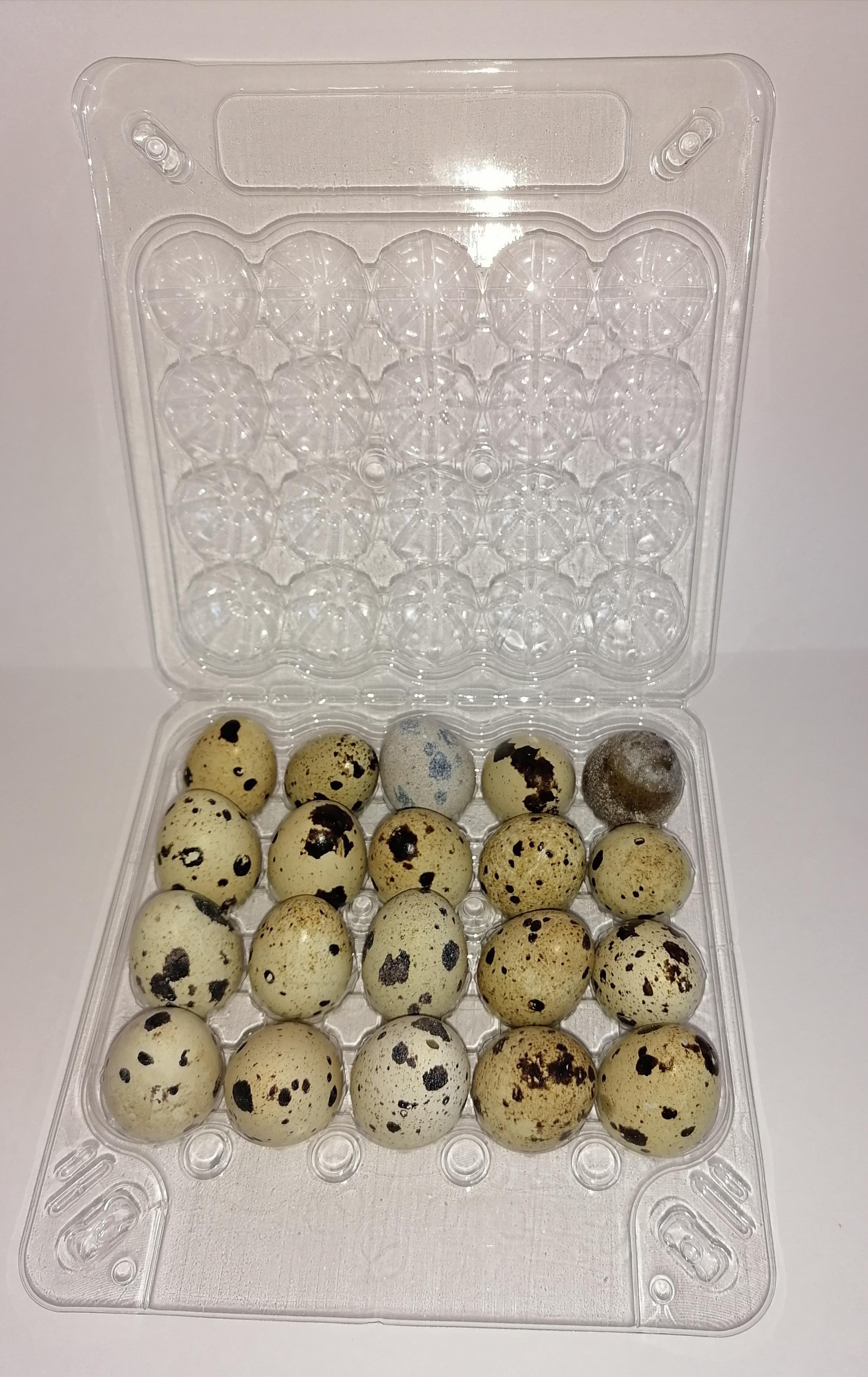 Коррексы (упаковка) под перепелиное яйцо