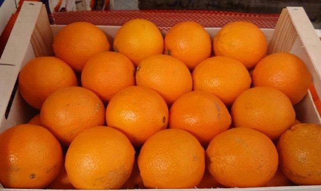 Апельсин Навелин (отборный, крупный)