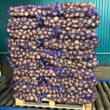 Картофель оптом урожая 2019 г.