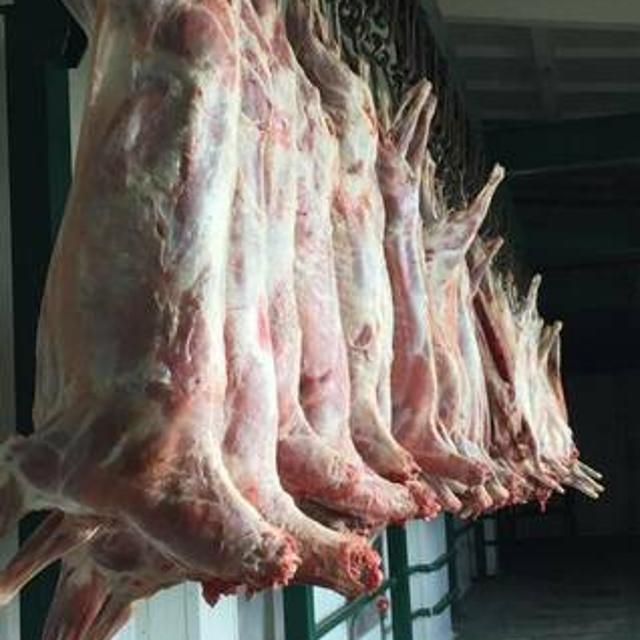 Мясо баранины,говядины