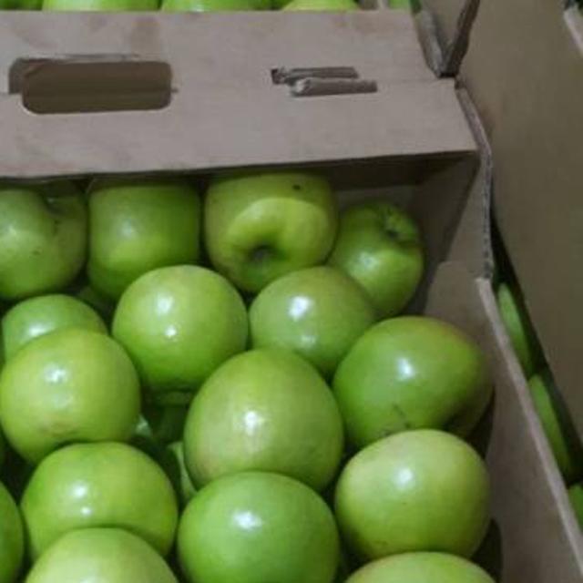 Яблоки №103679