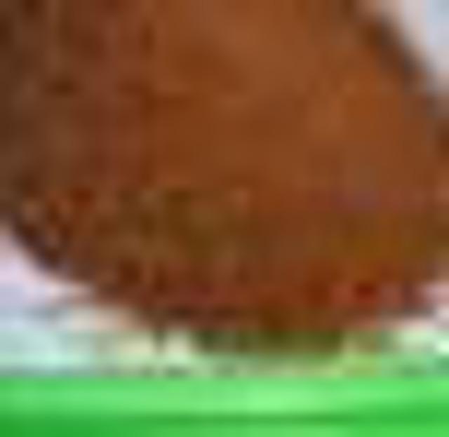 Жмых рыжиковый