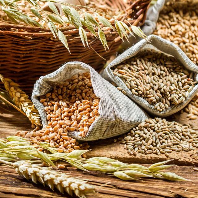 продам горох продовольственный,овес,ячмень, пшеницу.