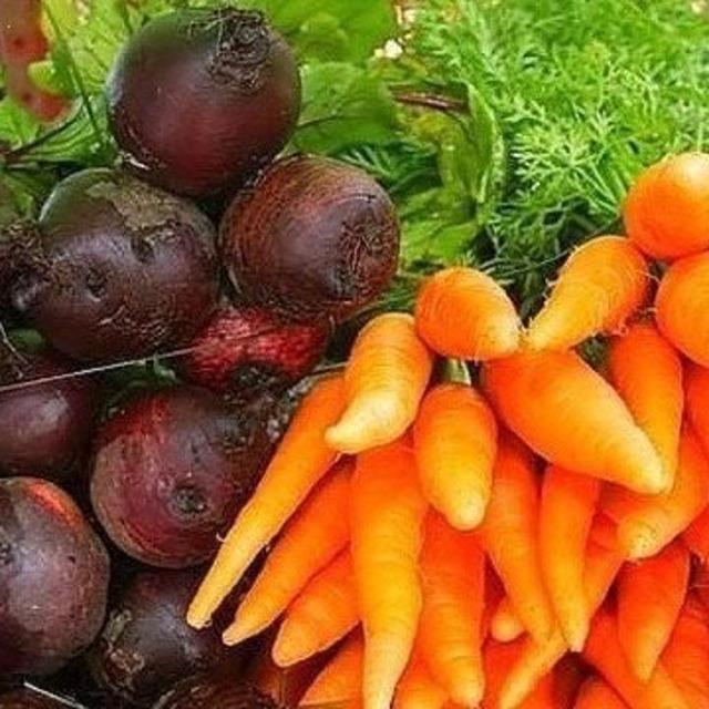 Свекла, морковь концентрированный сок