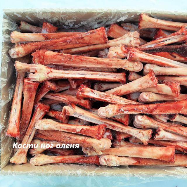 Кости ног оленя с копытом