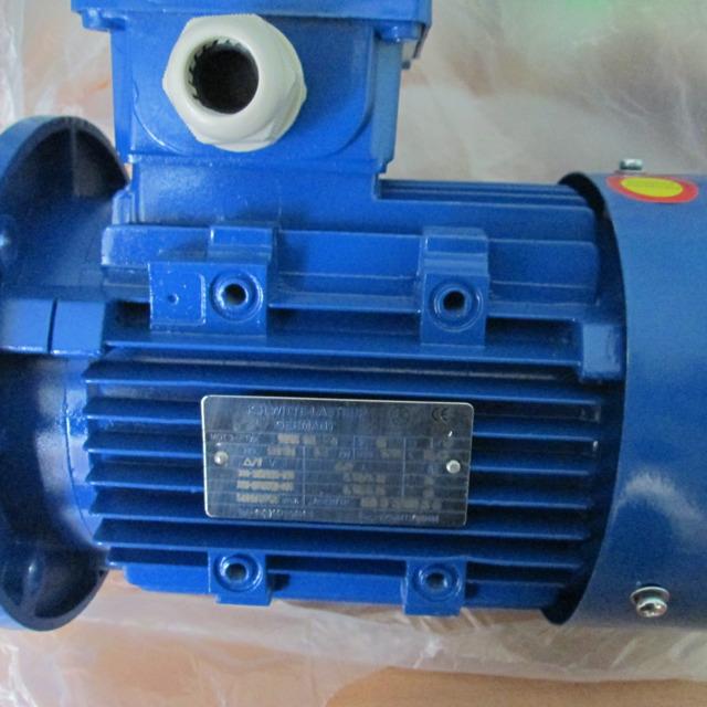 Мотор WSHE 90L-4 1,5 квт Witte Lastrup/Германия