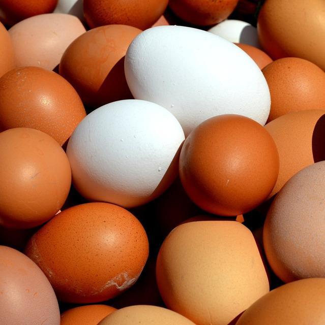 Яйцо столовое №20506