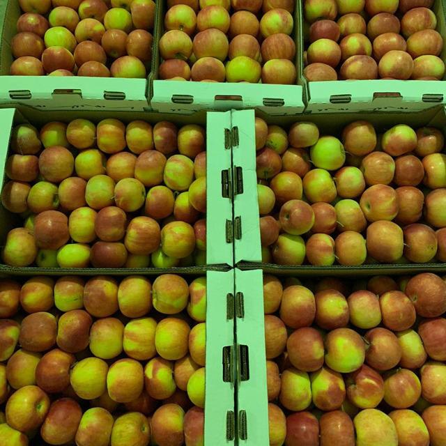 Яблоки №205109