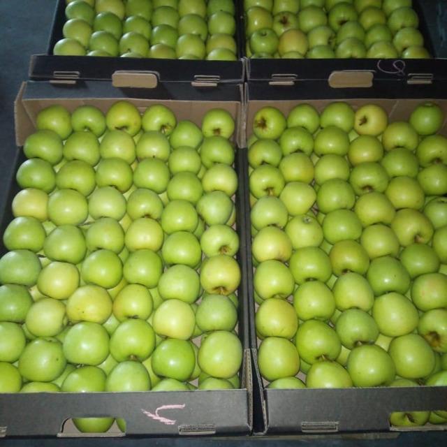 Яблоки, сорт Голден