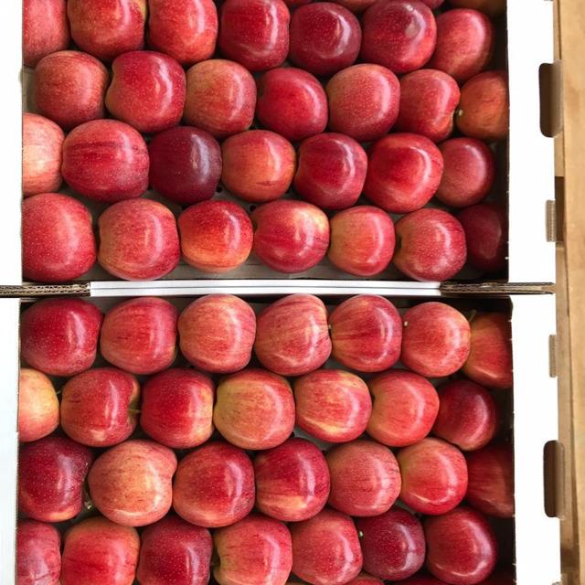 Яблоки оптом 70+ от производителя от 70 р/кг.