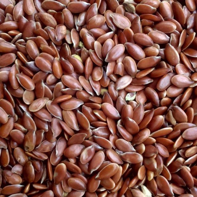 Лен масличный (Flax )