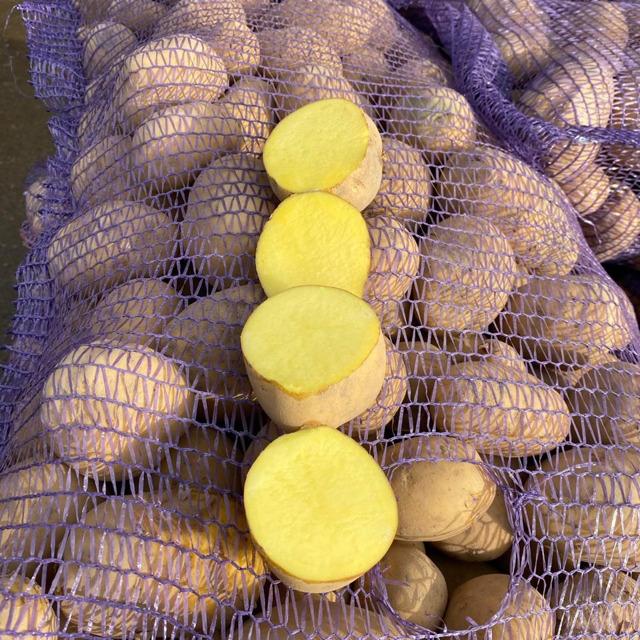 Картофель оптом без посредников красный