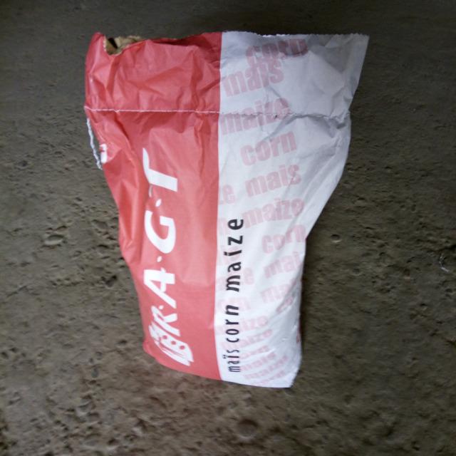 Семена кукурузы микси (RAGT)