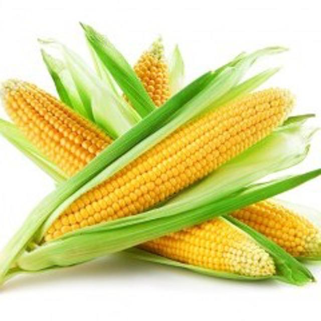 Реализуем Кукурузу 1, 2 класса, качество ГОСТ. По всем в